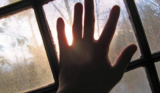 Abriendo las ventanas