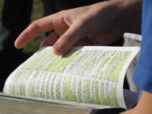 Escudriña la escritura